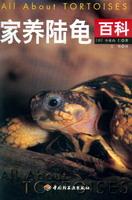 家养陆龟百科